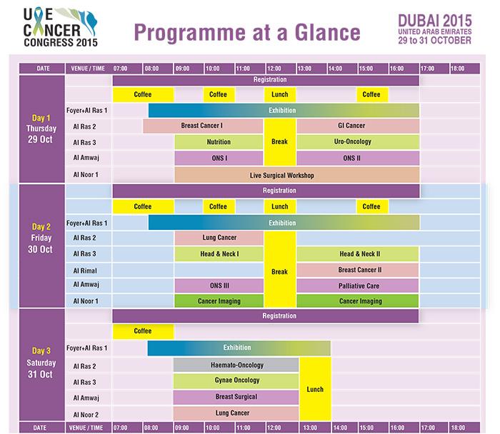 UAECC2015 program at glance_02